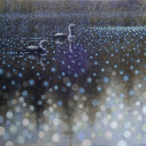 De Groot, Ewoud_Pacific Loons_oil on linen_51 x 51 inches