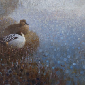 Ewoud de Groot, Resting Pintails, oil on linen, 23 x 47 inches, SOLD