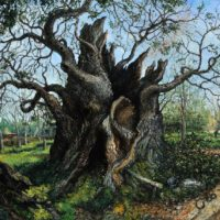 Old Man of Calke, oil on linen, 78 x 92 inches, $42,000