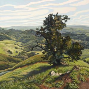 Phyllis Shafer, California Live Oak, oil on linen, 30 x 30 inches, SOLD