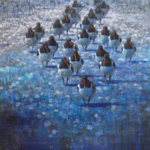Ewoud de Groot, Resting Oyster Catchers, oil on linen, 39.5 x 39.5 inches