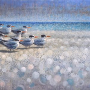 Ewoud de Groot, Resting Royal Terns, oil on linen, 35.5 x 59 inches