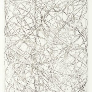 Arnoldi, Charles_Untitled CA16-711A_etching 3 of 10_7.25 x 5.5 inches_$1,800