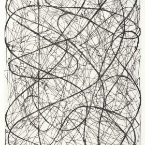 Arnoldi, Charles_Untitled CA16-712_etching 3 of 14_8 x 6 inches_$1,800